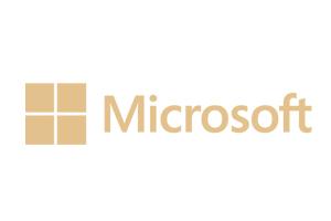 cz_loga_reference_300x200_microsoft
